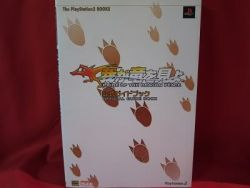 pride-of-the-dragon-peace-official-guide-book-playstation-2-ps2