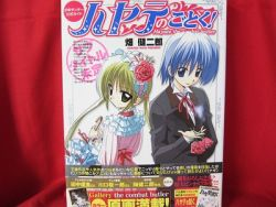 hayate-combat-butler-official-guide-art-book-wposter